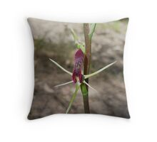 "Small Tongue Orchid ""Cryptostylis leptochila"" Throw Pillow"