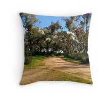 Which way do i Go ? Throw Pillow