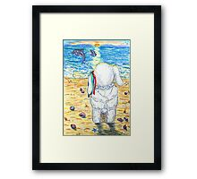 Pooky Dolphin Watching at Sunset Framed Print