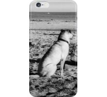 00395 iPhone Case/Skin