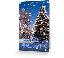 Christmas Card - Season's Greetings A Collaboration With Cherylc1 Greeting Card
