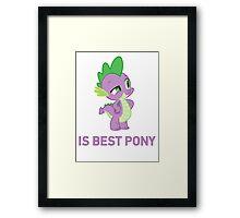 Spike Is Best Pony - MLP FiM - Brony Framed Print