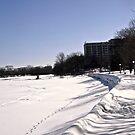 Rideau River, Ottawa, ON Canada by Shulie1