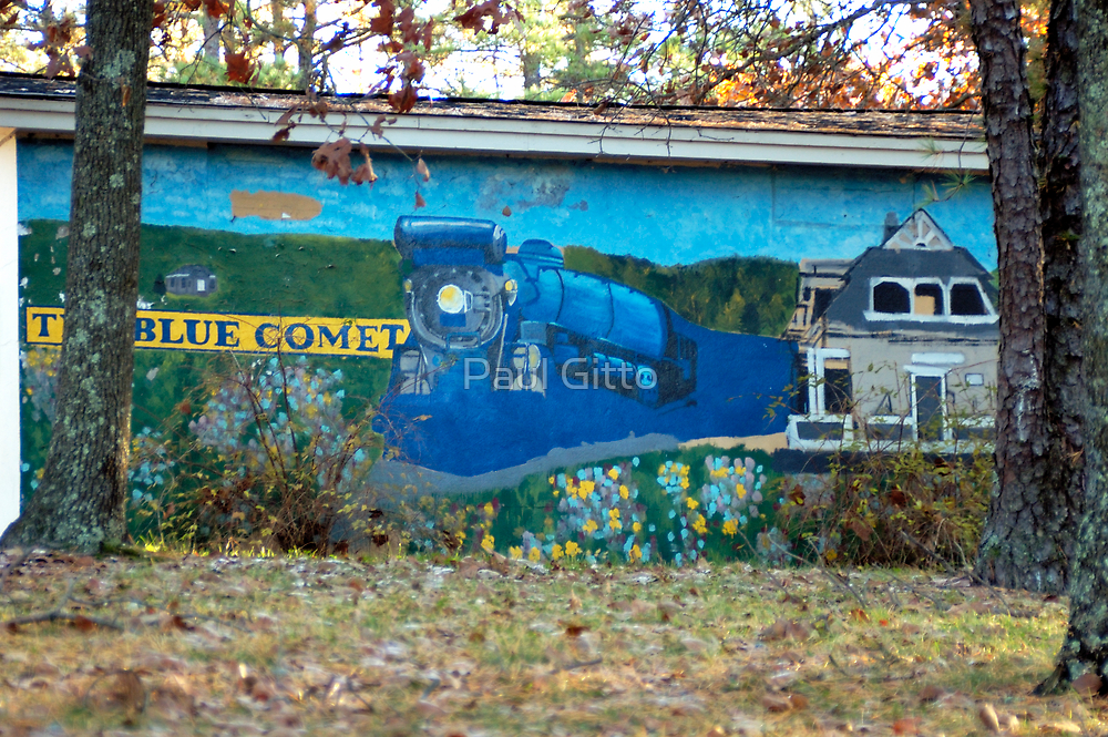 Gone, But Not Forgotten - The Blue Comet by Paul Gitto