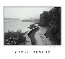Gap of Dunloe by Donal Lyne
