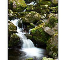 O' Sullivans Cascade by Donal Lyne