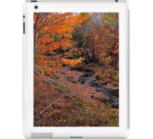 Winding Brook iPad Case/Skin