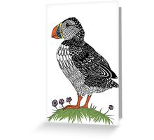 Puffin in colour Greeting Card