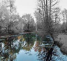 reflection by Nico Saroki