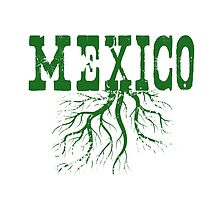 Mexico Roots by surgedesigns