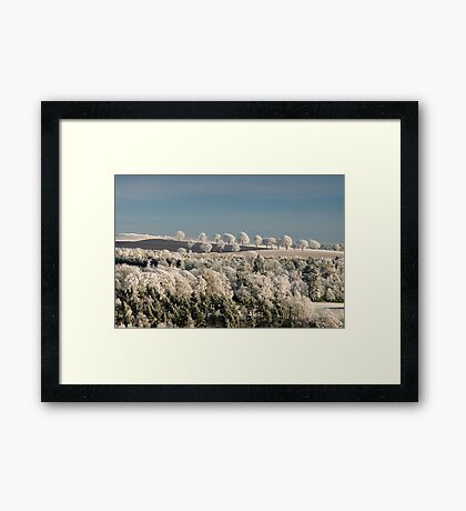 Marching trees Framed Print