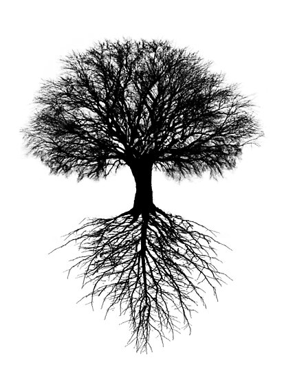 Tree of Life by Wild Mountains