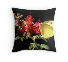 Sulphur Butterfly Throw Pillow
