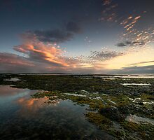 SERENITY by STEVE  BOOTE