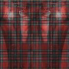 Tartan Jeggings by GrizzlyGaz