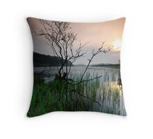 LAST STAND. Throw Pillow