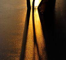 Shadow's by Simon Pattinson