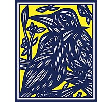 Albarracin Bird Yellow Blue Photographic Print
