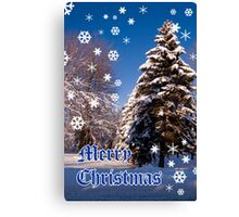 Merry Christmas- a collaboration with Reflector Canvas Print