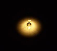 Bulb by cheekadoole