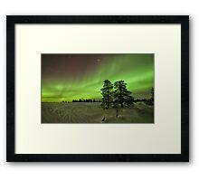 Pink, Green & Gold Framed Print