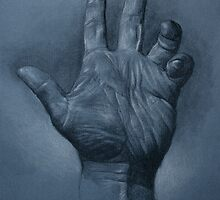 hand by Paul Mellender