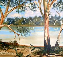 Murray River by John Segond
