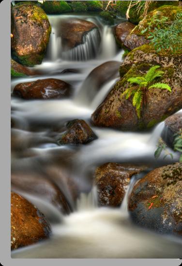 HDRi Cascades Marysville by Tony Lin