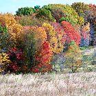 Autumn in Pennsylvania by clizzio