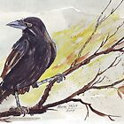 Crow on a bough by Maree  Clarkson