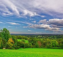Beautiful English Countryside #2, Redhill, England by atomov