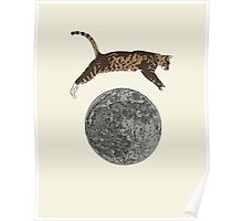 The Cat Jumped Over The Moon Poster