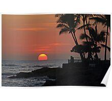 Tropical Sun Poster