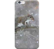 Warming My Paws One At A Time iPhone Case/Skin