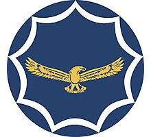 Roundel of the South African Air Force  Photographic Print