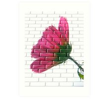 Just a Wall! Art Print