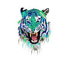 Tiger Force Teeth Face Photographic Print