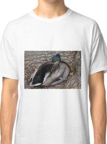 Sleeping Duck Classic T-Shirt