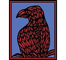 Niverson Eagle Hawk Red Blue Photographic Print