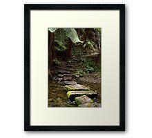 Mystery steps Framed Print