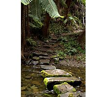 Mystery steps Photographic Print