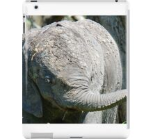 AFTER A MUD BATH, THE BABY ELEPHANT  - THE AFRICAN ELEPHANT – Loxodonta Africana iPad Case/Skin
