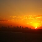 Sunset over Sydney by Samantha  Goode