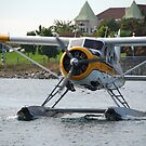 Kenmore Air DHC-2 deHavilland Beaver > by John Schneider