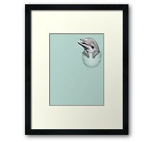 POCKET DOLPHIN Framed Print