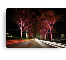 Kings Park Traffic  Canvas Print