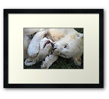 Play & Affection Framed Print