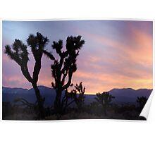 Desert Silhouette Poster