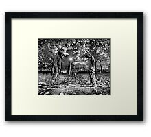 Meeting The Stranger Side Framed Print