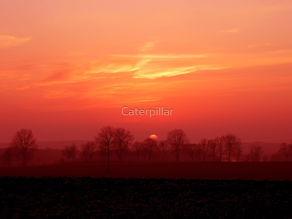 Countryside by Caterpillar